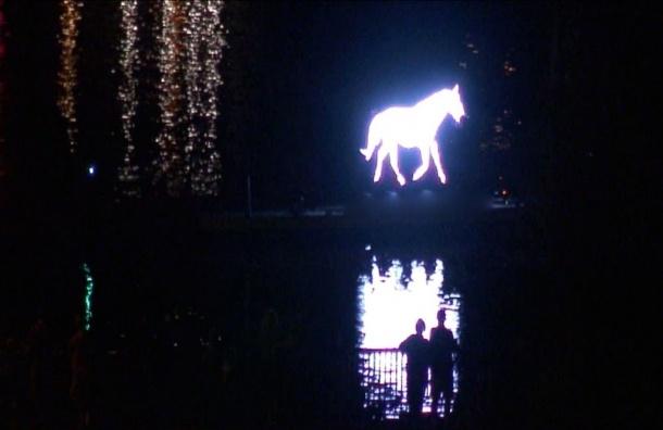 Белая лошадь промчится по рекам и каналам ночного Петербурга