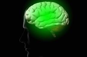 Ученые развеяли миф о том, что люди используют лишь 10% мозга