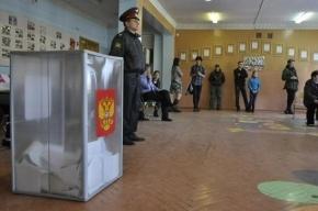 «Яблоко» через суд зарегистрировало кандидата