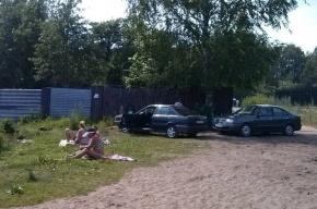 В Петербурге состоится экологическая акция «Идеальный берег»