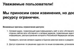 Роскомнадзор впервые заблокировал бесплатный телефонный справочник