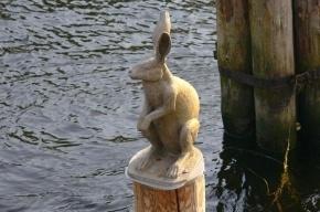 В Петербурге молодые люди обокрали зайца при помощи магнита