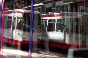 В Петербурге объявлен конкурс на новый проект легкорельсового трамвая