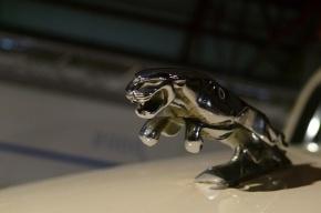 В Петербурге за одни сутки угнали два автомобиля Jaguar
