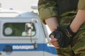 В Москве изнасиловали и ограбили беременную няню