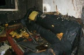 В пожаре на Петроградке погиб один человек