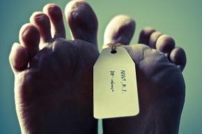 Полуголый пенсионер, найденный в канаве в Купчино, умер от переохлаждения