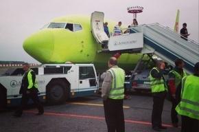 В Домодедово самолет врезался в тягач
