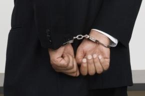 Петербургский адвокат арестован по обвинению в педофилии