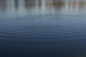 Петербуржец попытался на спор переплыть Неву и утонул