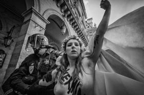 Активистки Femen разделись перед шведским премьером