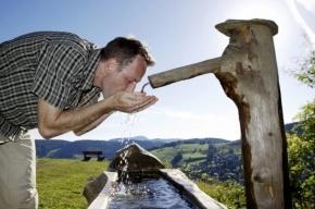 Какие напитки помогут утолить жажду