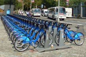 В Петербурге можно будет кататься на велосипеде весь день за 100 рублей