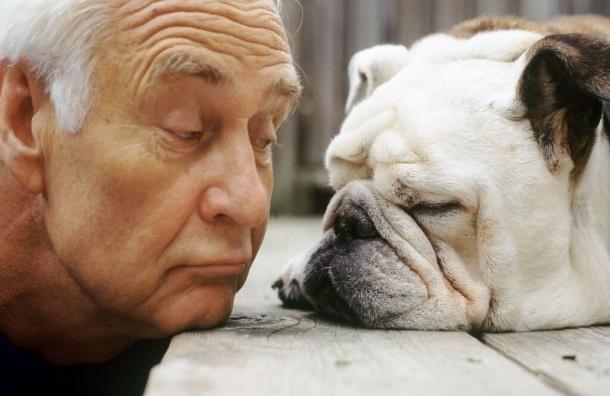 Ученые: Владельцы собак чувствуют себя моложе на десять лет
