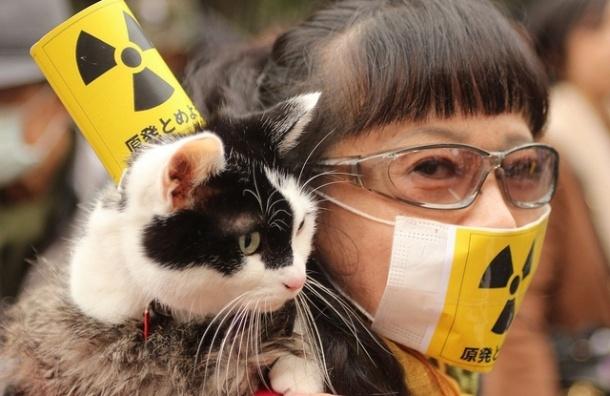 Ученые: Авария на Фукусиме привела к генетическим мутациям в Японии