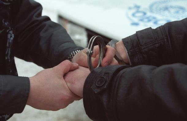 В Калининском районе Петербурга задержан педофил