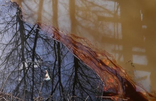 В Неву сбросили полтонны дизельного топлива