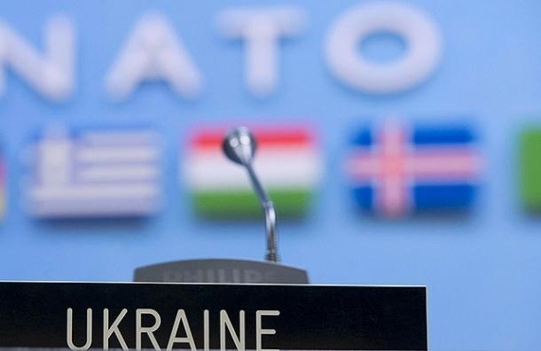 Тимошенко анонсировала референдум о вступлении в НАТО на 26 октября