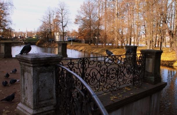 Застройщики попытаются отсудить Лопухинский сад