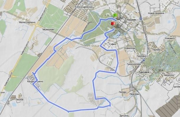 Велопрогулка за сохранение Кондакопшинского леса и царскосельских парков