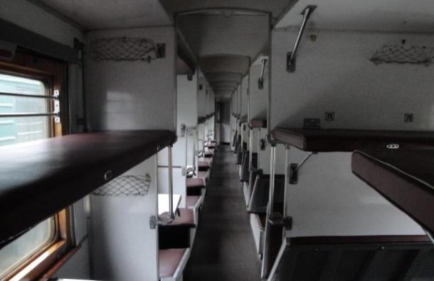 В Петербурге отец спрятал дочь от приставов на багажной полке поезда