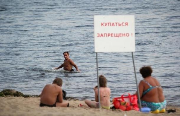 Роспотребнадзор обнаружил кишечную палочку в Суздальских озерах и Ольгинском пруду