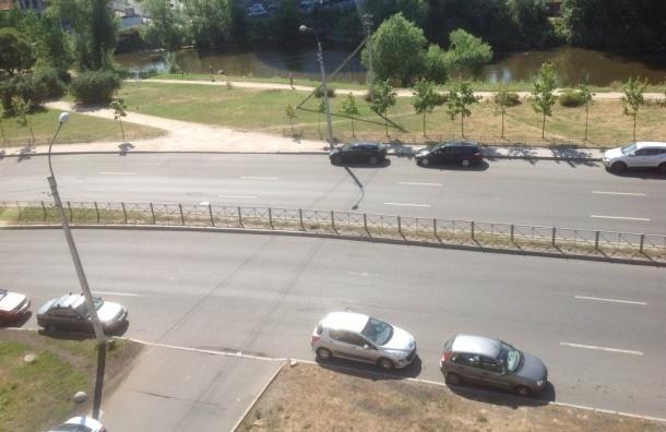 Активисты собирают подписи за пешеходный переход на Одоевского