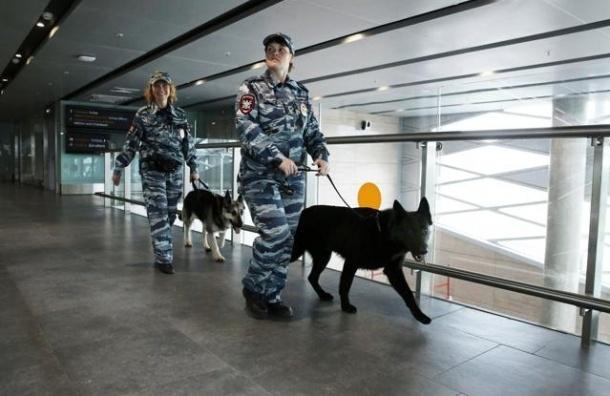 Пулково «заминировали» из Украины
