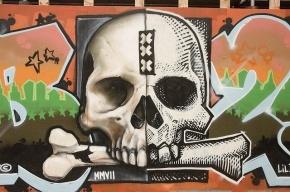 В Колпино в канаве у железной дороги нашли скелет человека