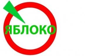 Градозащитницу увольняют из госучреждения за выдвижение от «Яблока»