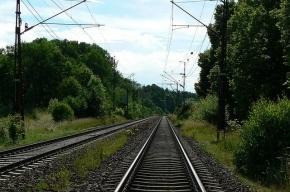 В поезде Петербург – Москва обиженный пассажир тяжело ранил попутчика
