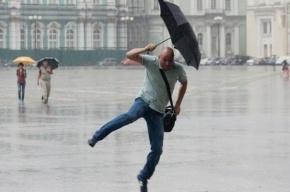 В Петербурге в начале недели ожидают дожди с грозами