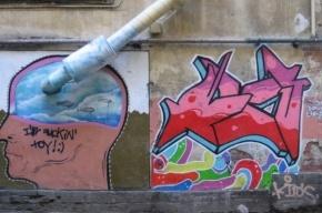 Смольный предложил 104 объекта для граффитистов