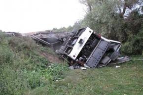 Автобус рейса Смоленск-Петербург вылетел в кювет, семь человек пострадали