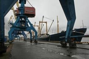 В Петербург не пустили 22 тонны американского корма для животных