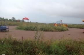 Тайна загадочного пляжа в Петербурге раскрыта