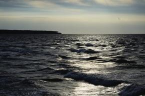 В Тихом океане зафиксирован загадочный звук неизвестного происхождения
