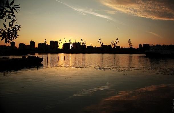 В Москва-реке нашли сумку с отрезанной женской головой