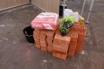 Общегородской школьный конкурс «Когда я вырасту – стану строителем»: Фоторепортаж