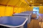 Фоторепортаж: «Центр для реабилитации тюленей»