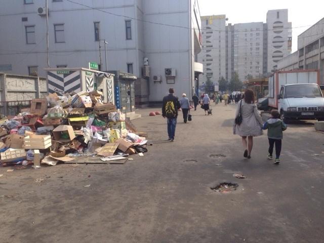 Мусорная куча у метро Проспект Просвещения: Фото