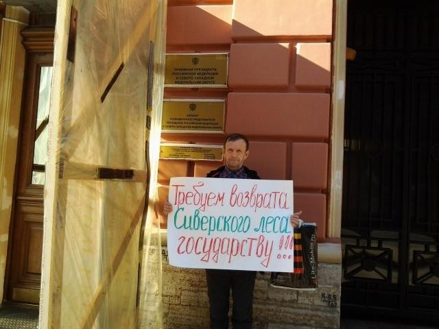 В Петербурге прошел пикет в защиту Сиверского леса: Фото