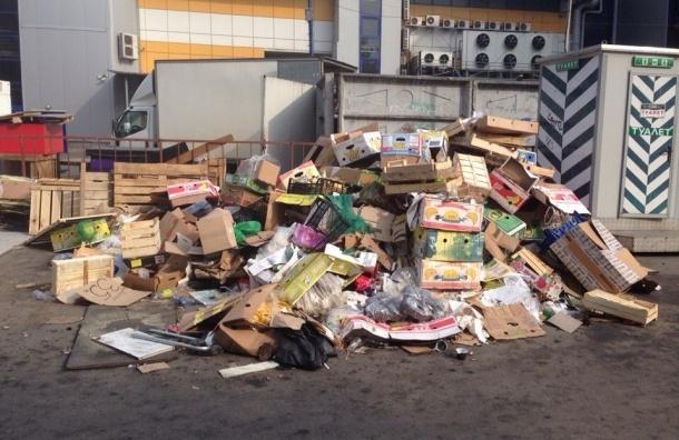 У метро Проспект Просвещения растет Вавилонская башня из мусора