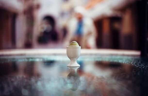 Роспотребнадзор призвал отказаться от европейских яиц