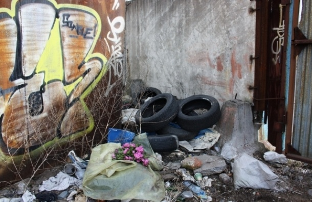 Вице-губернатор назвал самые замусоренные районы Петербурга