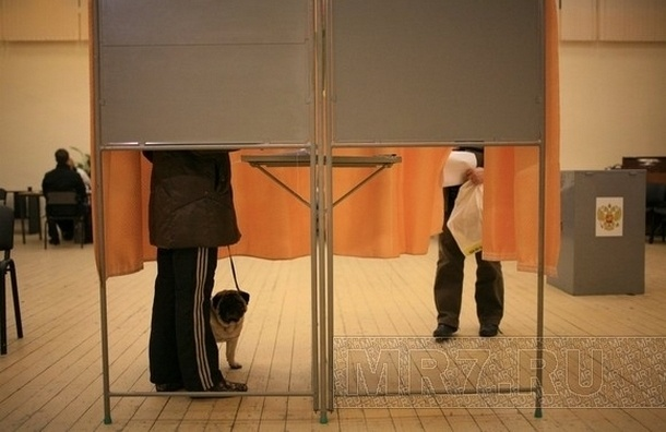 В Петербурге начался день губернаторских и муниципальных выборов