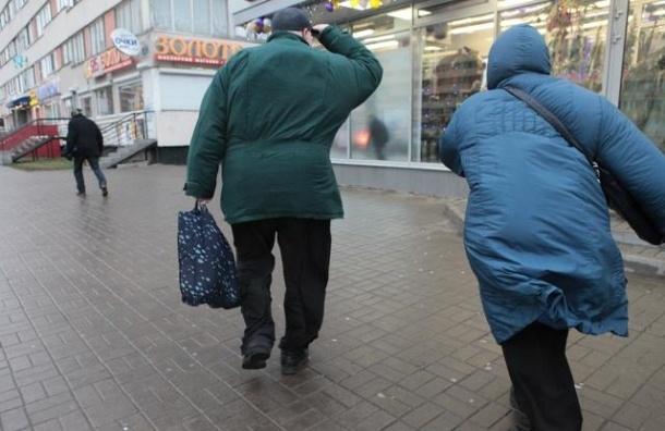 В Петербурге ожидается усиление ветра до 20 метров в секунду