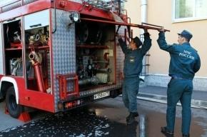 Из горящего кафе на Петроградке эвакуировали десять человек