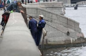В Петербурге мужчина бросился в Неву, но не допрыгнул и сломал ногу