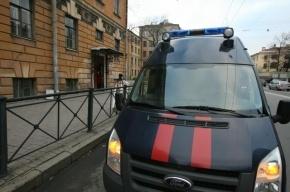 В Петербурге убийца вынес труп собутыльницы в парадную